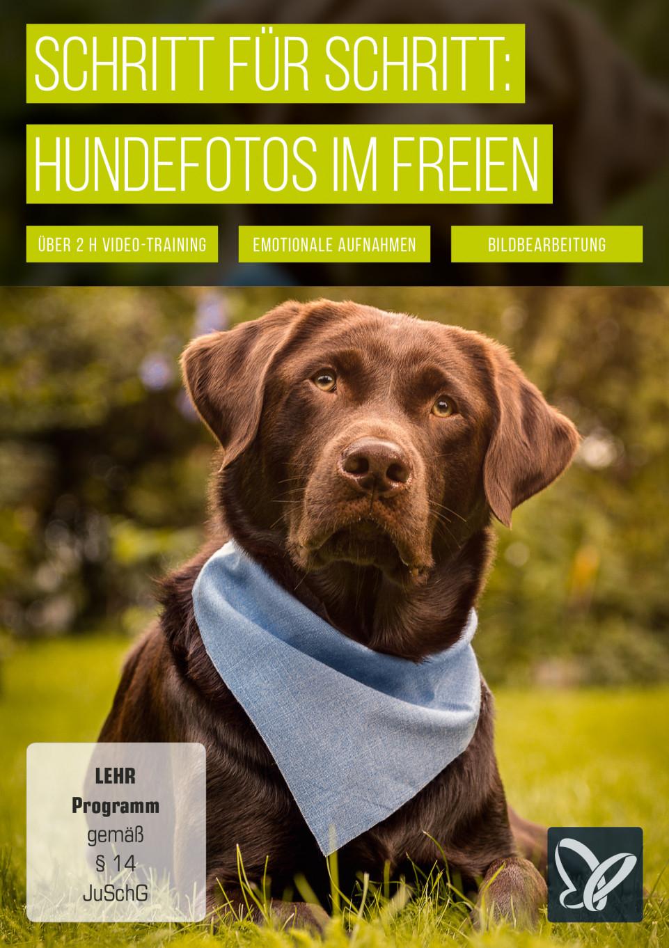 Schritt für Schritt: Hundefotos im Freien
