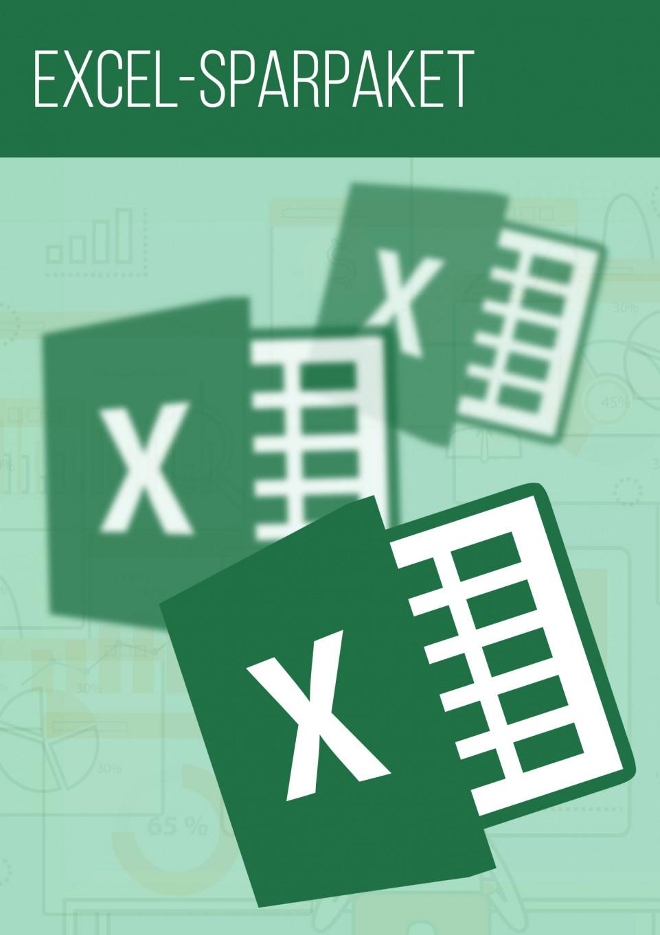 Microsoft Excel-Tutorials im Sparpaket