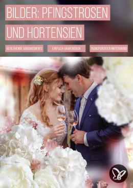 Pfingstrosen, Hortensien und Sukkulenten: Blumen-Bilder für deine Fotos