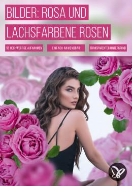 Rosa und lachsfarbene Rosen: 55 Bilder für deine Fotos