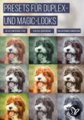 39 Presets für Duplex- und Magic-Looks in Lightroom und Camera Raw