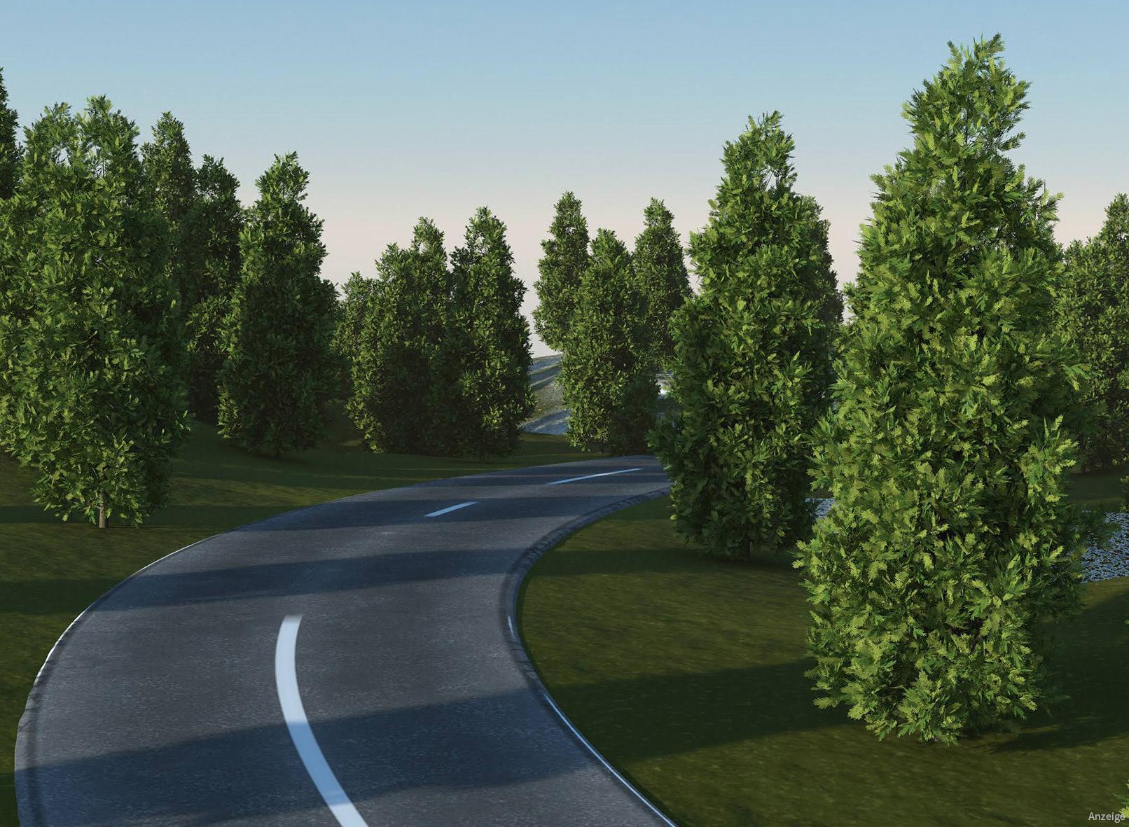 Straße mit Bäumen, erstellt mit Laubwerk und Cinema 4D