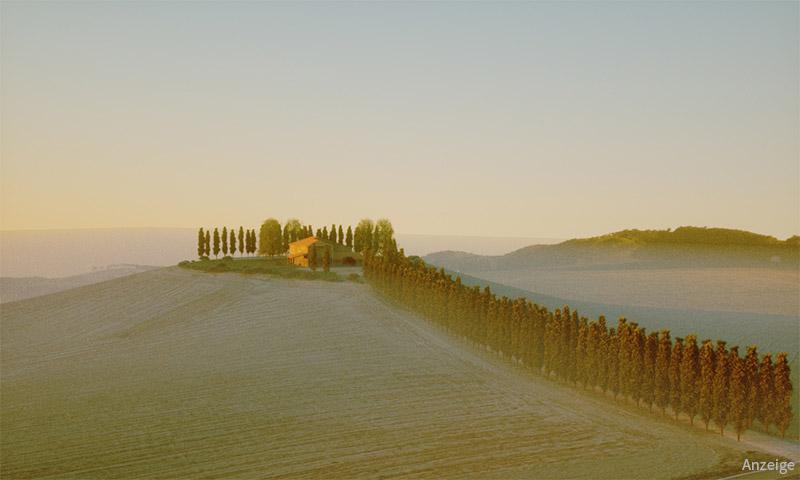Cypress Hill von Mario Kelterbau, 3D-Landschaft modelliert in mit Laubwerk in Cinema 4D