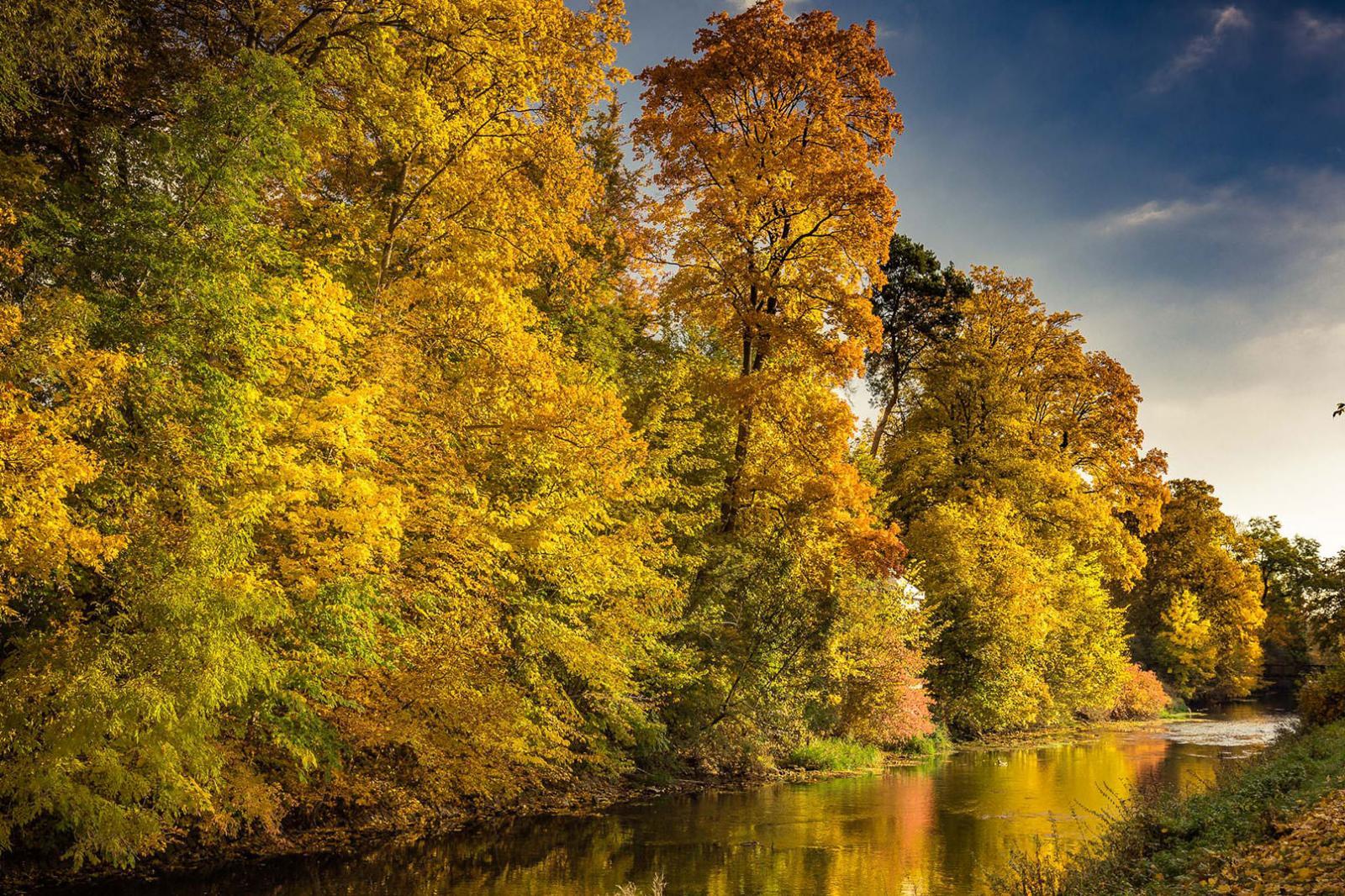 Herbst-Fotografie, Fotoshooting Waldrand mit Fluss