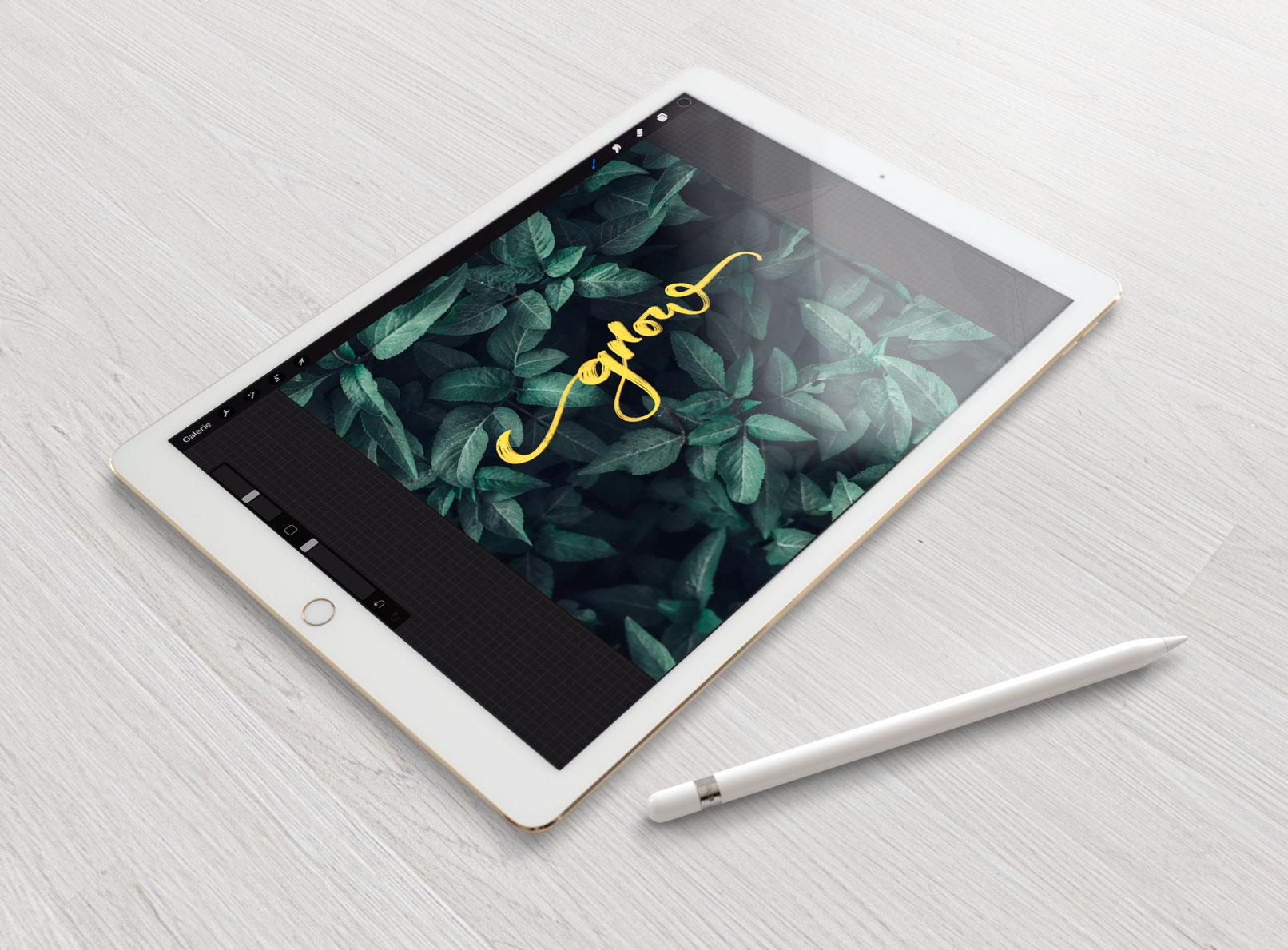 Digitales Zeichnen auf dem iPad mit diesem Procreate Tutorial