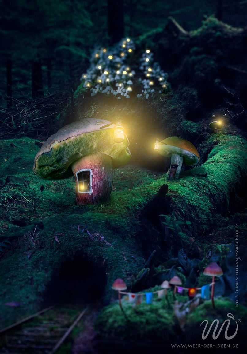 100% Fantasy in Photoshop, diese Montage wird als finales Bild im Video-Training Schritt für Schritt entwickelt.