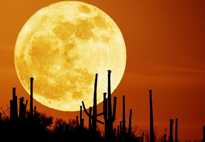 Astro- und Himmelsfotografie: Technik, Motive & Praxis