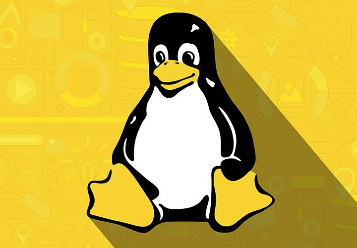 Linux-Tutorial für Einsteiger: Grundlagen lernen & Ubuntu einrichten
