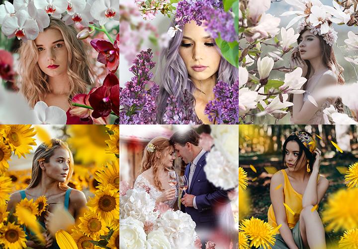 Über 280 Blumenbilder im Sparpaket: freigestellt und direkt anwendbar!