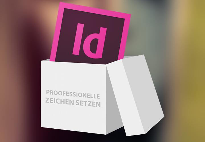 InDesign-Sparpaket Pro