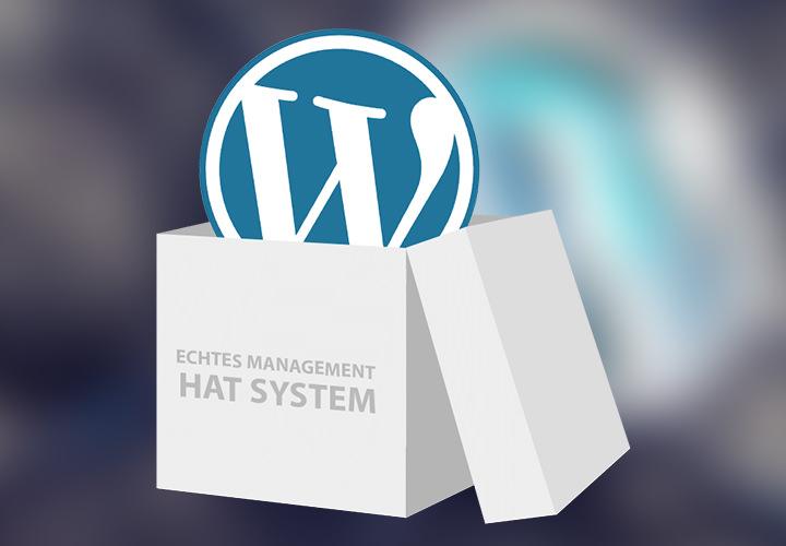 WordPress-Sparpaket Pro
