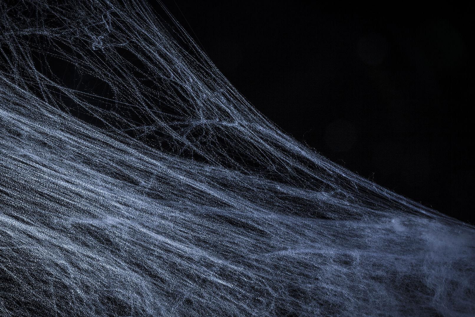 Spinnweben vor schwarzem Hintergrund als Vorlage für Composings