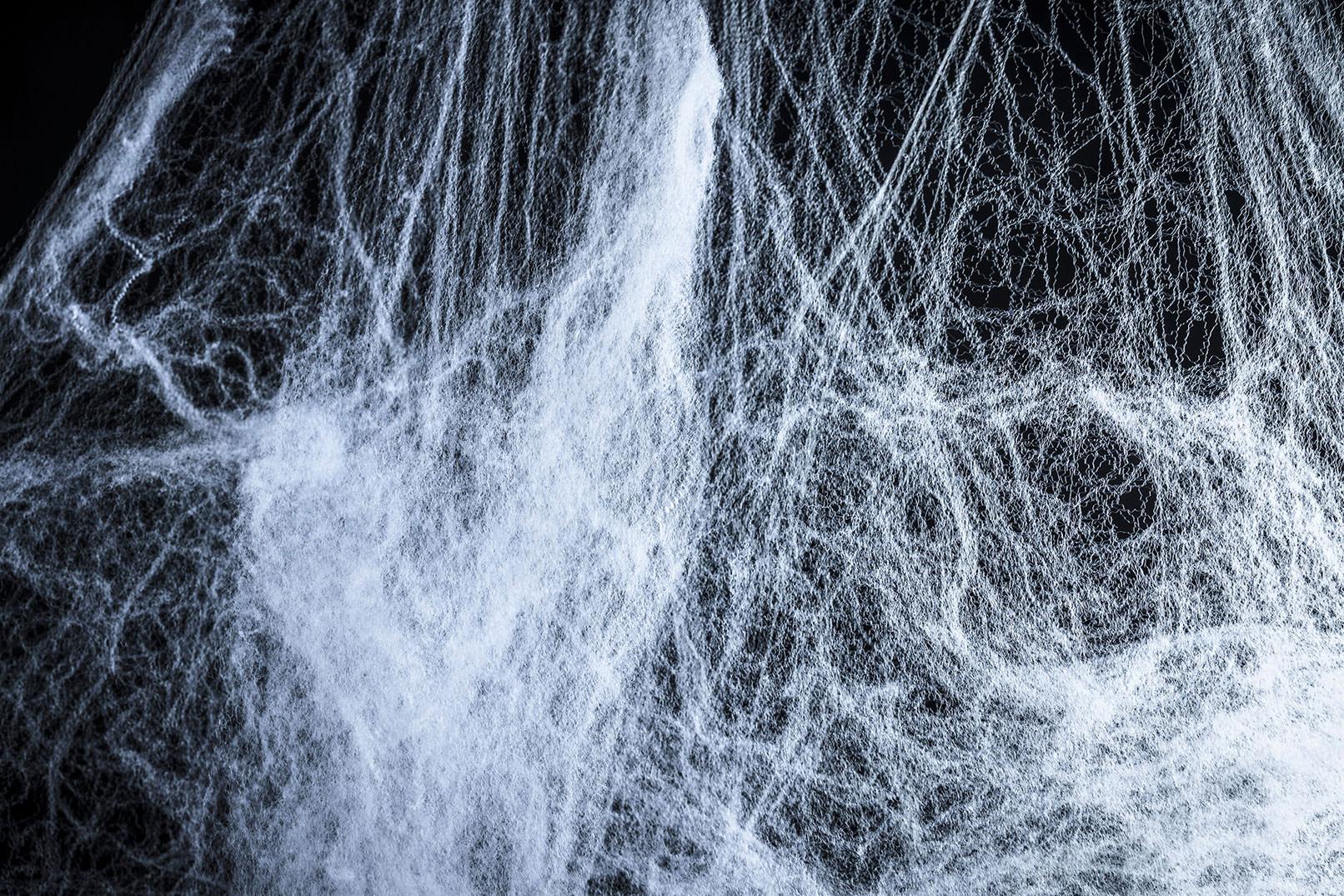 Spinnennetze vor schwarzem Hintergrund zur Einarbeitung in eigene Bilder