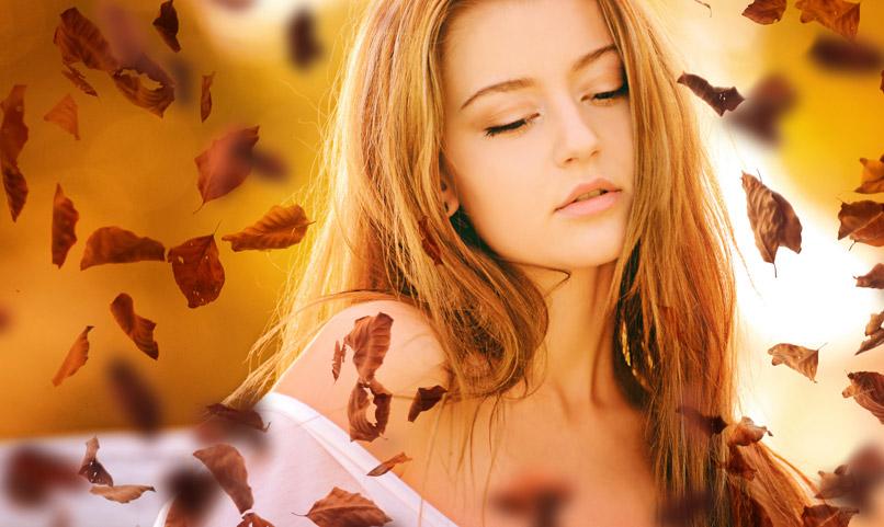 Hochaufgelöste Bilder: fallende Herbstblätter & Herbstlaub