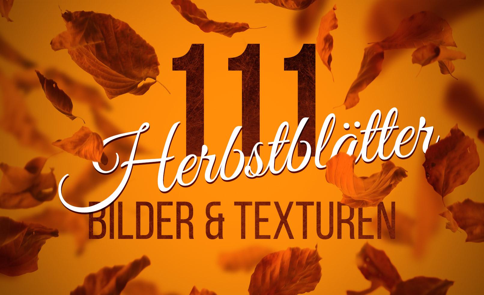Herbstblätter Bilder zur Anwendung als Texturen oder Overlays in eigenen Herbstbildern.