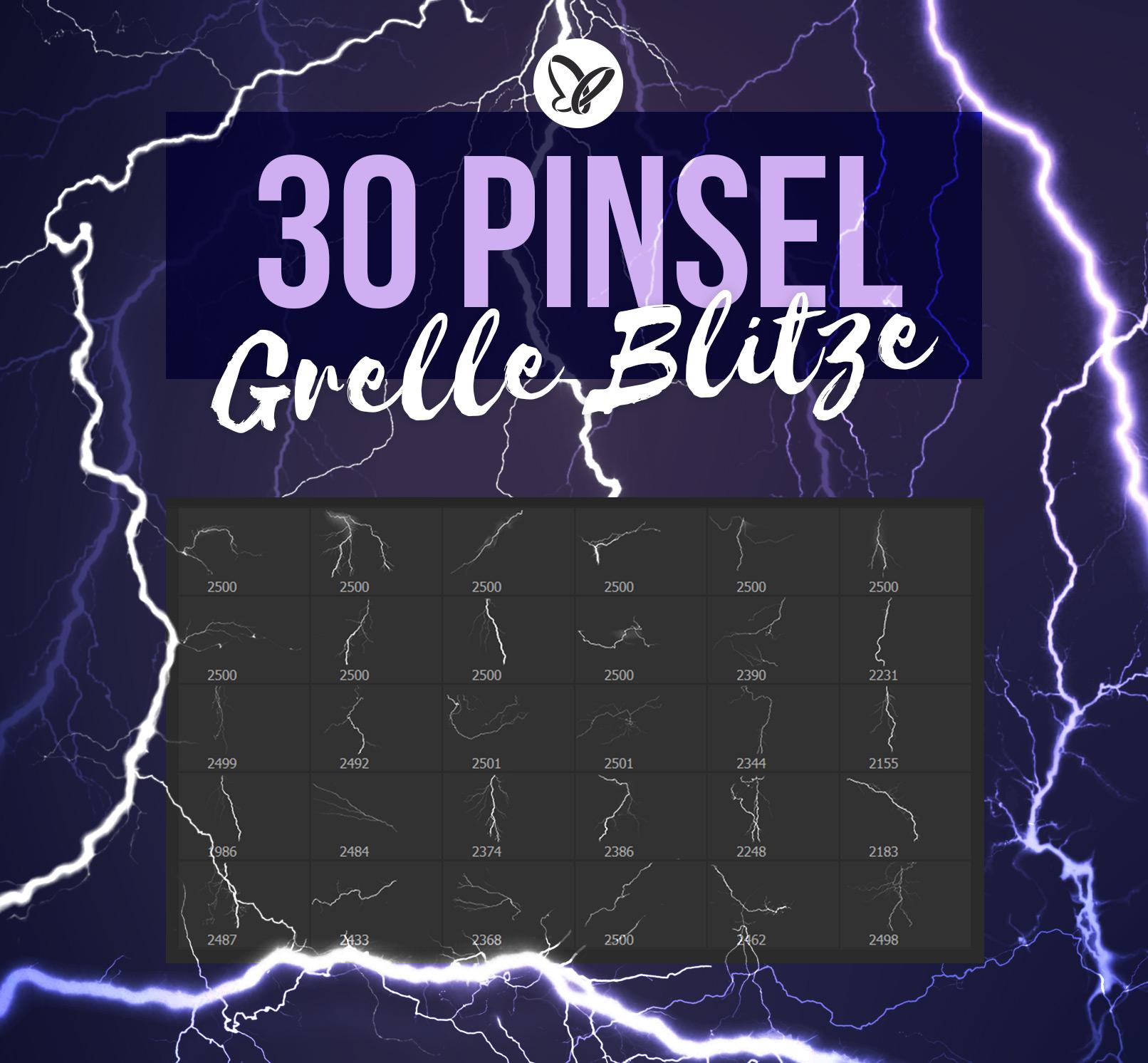 30 Pinsel mit Blitz-Bildern