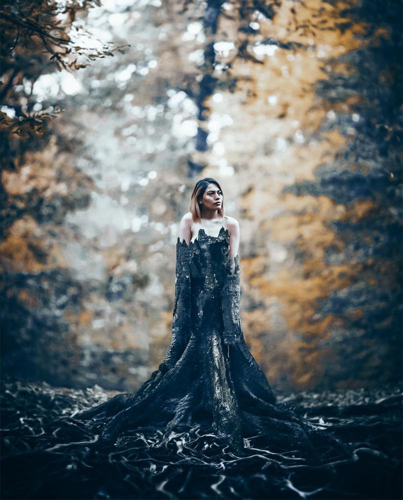 Dark Fantasy-Presets für Lightroom und Photoshop mit Camera Raw