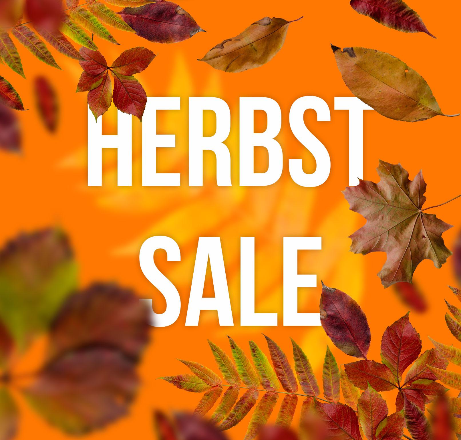 Banner mit eingearbeiteten Fotos von Herbstblättern