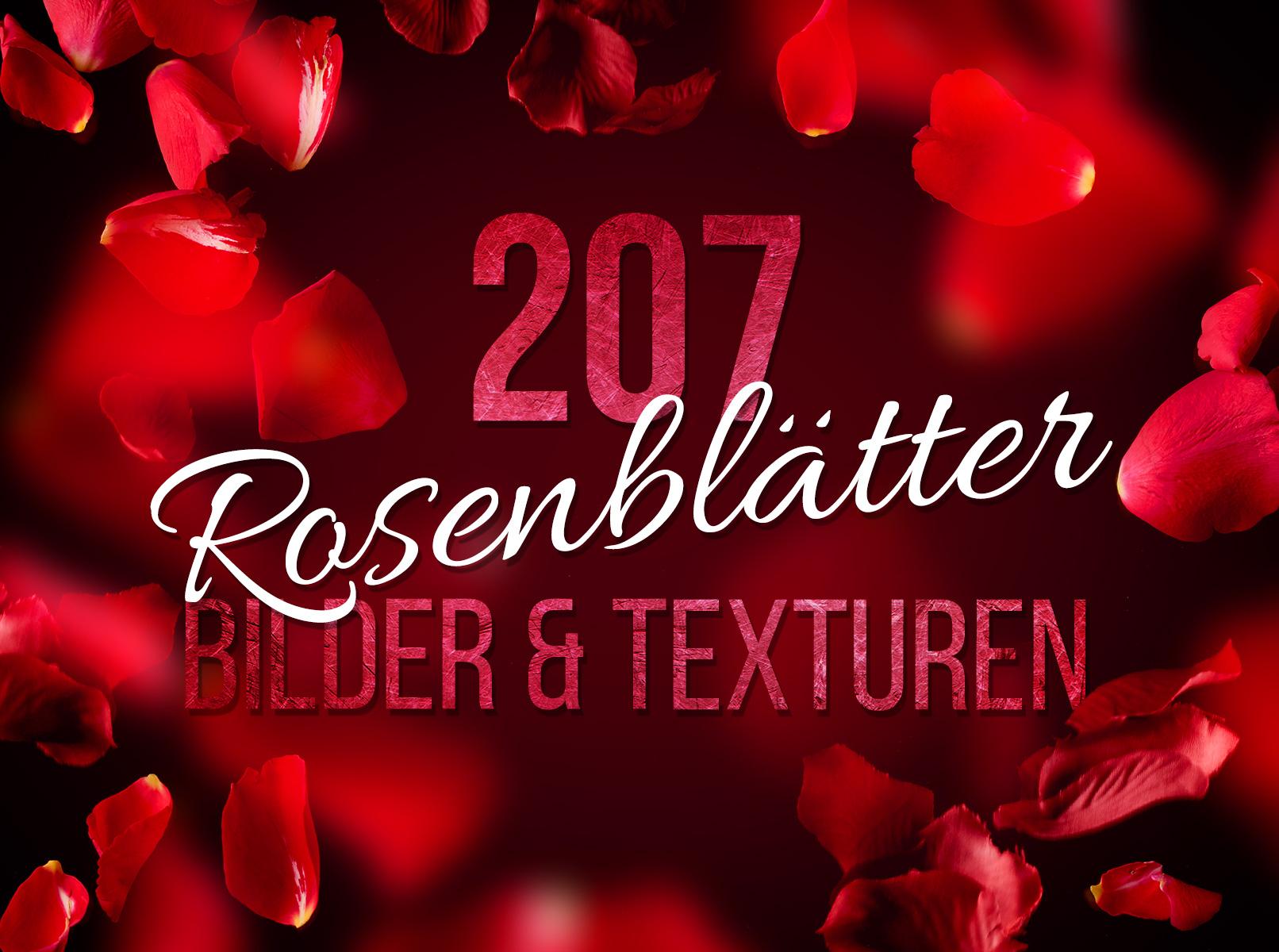 Text, umgeben von fallenden Rosenblättern roter Rosen. Beispiel für die Anwendung der Texturen.