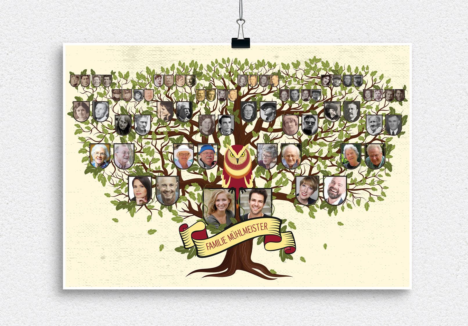 Illustrative & großflächige Vorlage für deinen Familienstammbaum – historisch anmutende Farbzeichnung